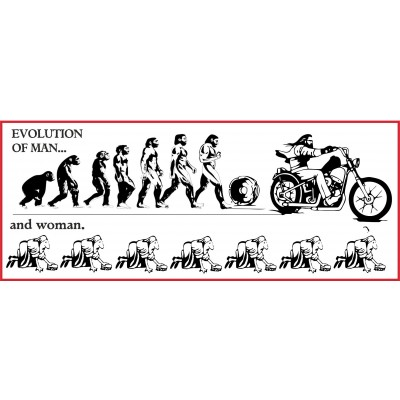 Hells Angels Support 81 pegatina EVOLUTION OF MAN