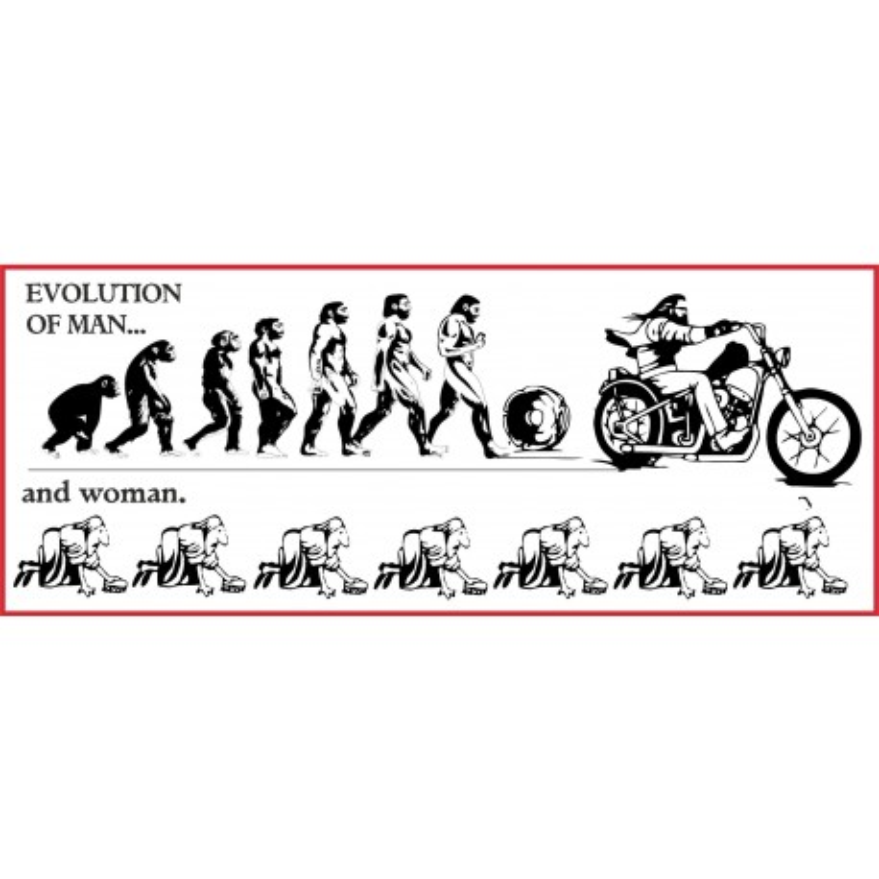 Hells Angels Support 81 autocollant EVOLUTION OF MAN
